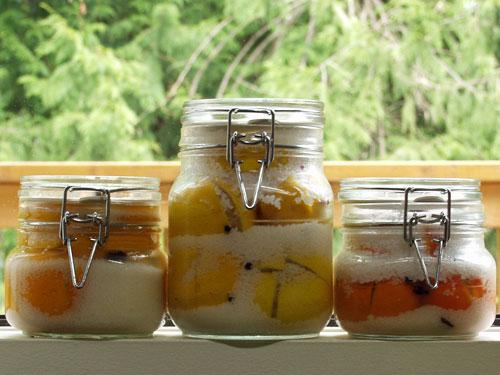 moroccan preserved lemons, limes, tangerines